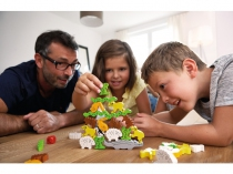 Pyramide-animaux-10-ans-fam
